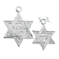 Ss Star Of David Charms 29096-Ss